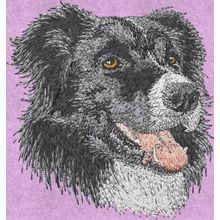 Stickmotiv: Border Collie 2