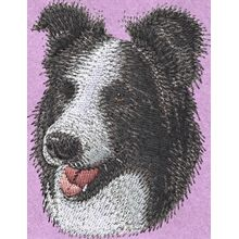 Stickmotiv: Border Collie 1